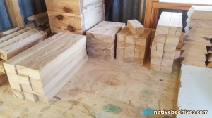 cypress_timbercut_05092015