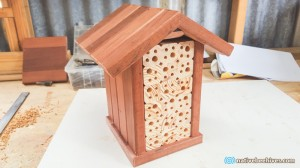 nbh beehotel red3