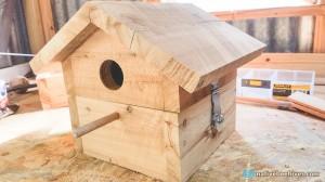 nbh birdhouse1