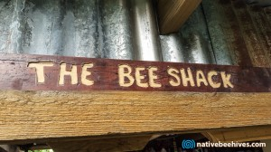 nbs_thebeeshack_sign