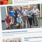Native Bee Magazine